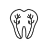 Jackson Wyoming Root Canal
